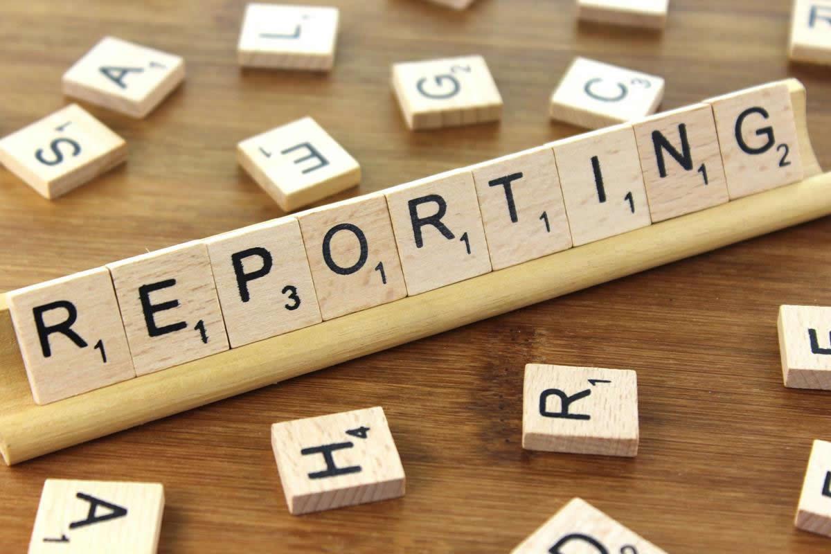 Servicios de desarrollo de software para reporting